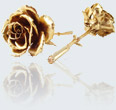 Real rose in 14K gold